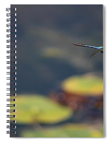 Malibu Blue Dragonfly Flying Over Lotus Pond Spiral Notebook
