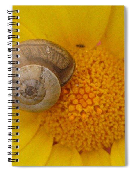 Malta Flower Spiral Notebook