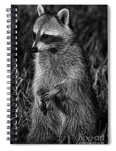 Mama Raccoon Spiral Notebook