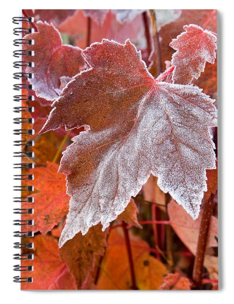 Maple Frost  Spiral Notebook