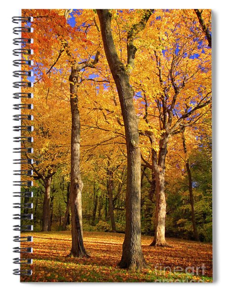Maple Treo Spiral Notebook