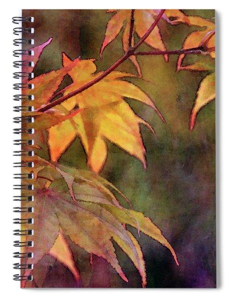 Maples Golden Glow 5582 Idp_2 Spiral Notebook