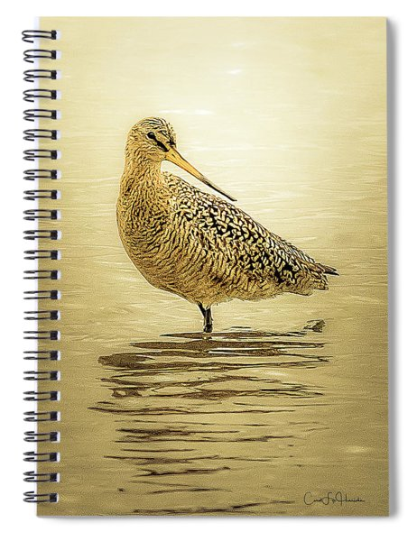 Marbled Godwit - Backward Glance Spiral Notebook