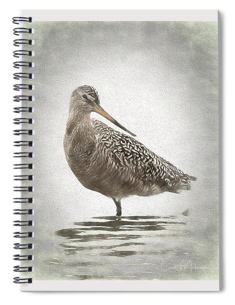 Marbled Godwit Spiral Notebook