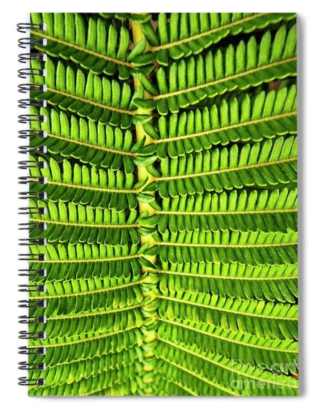 Maui Fern Garden Spiral Notebook