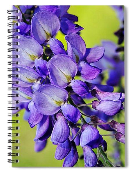 Mauve Wisteria Spiral Notebook