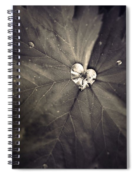 May 11 2010 Spiral Notebook
