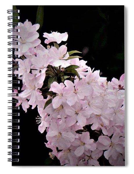 May Spiral Notebook