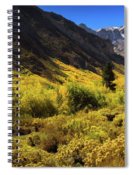 Mcgee Creek Alive With Color Spiral Notebook