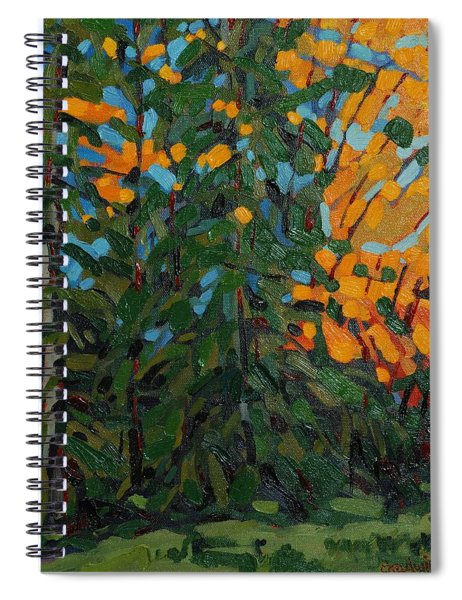 Mcmichael Forest Wall Spiral Notebook