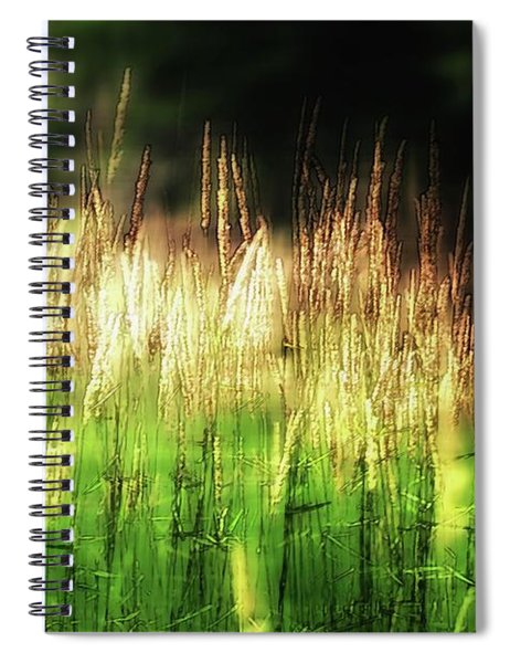 Meadow Grass Spiral Notebook