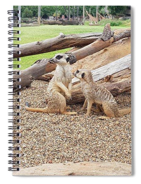 Meerkats  Spiral Notebook