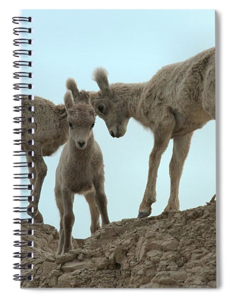 Meeting Of The Heads Spiral Notebook