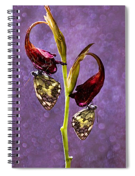 Meeting On The Flower Spiral Notebook