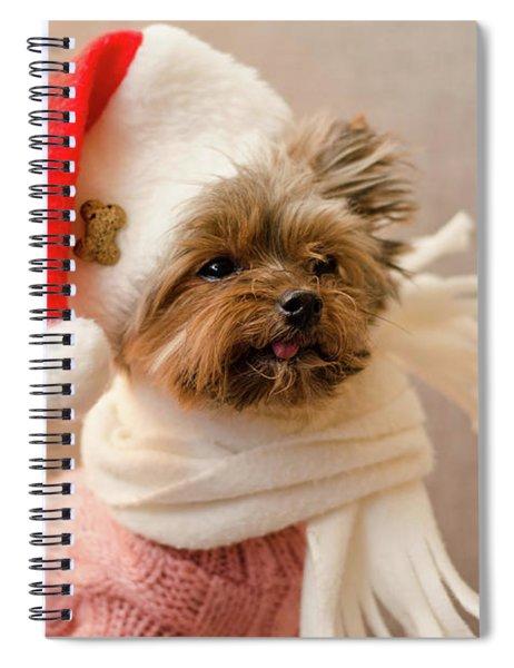 Melanie In Christmas Hat Spiral Notebook