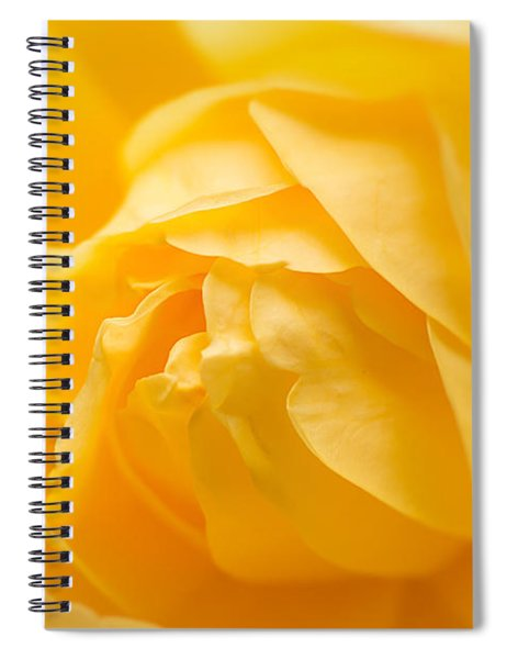 Mellow Yellow Rose Spiral Notebook