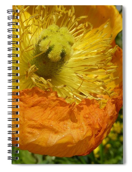 Mellow Yellow - Signed Spiral Notebook