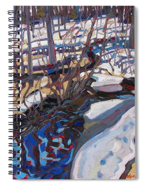 Melt Water And Ice At The Forest Edge Spiral Notebook
