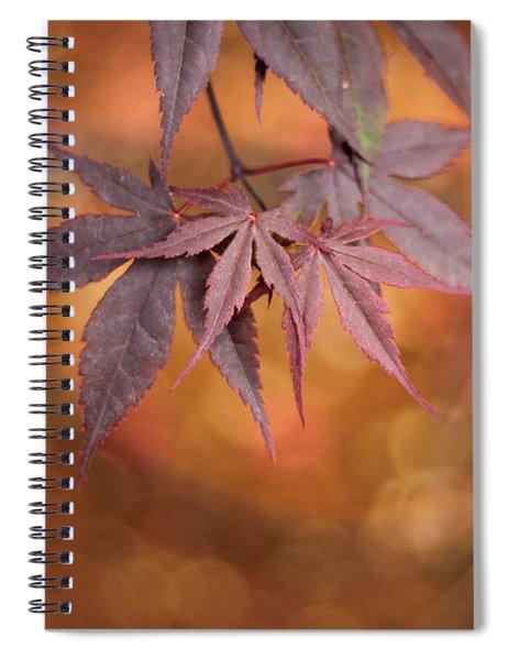 Mesmerize  Spiral Notebook