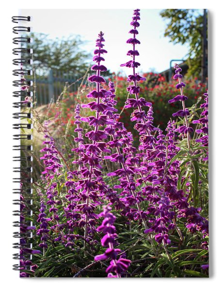 Spiral Notebook featuring the photograph Mexican Sage by Alison Frank