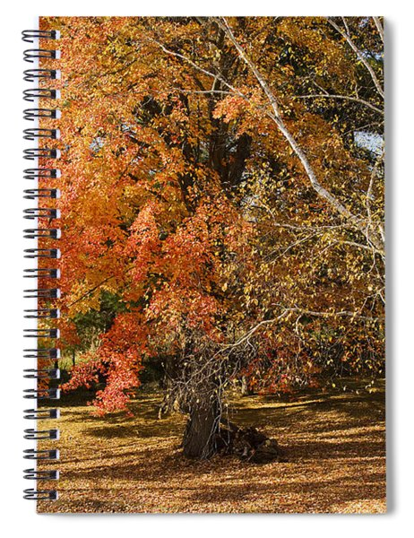 Michigan Autumn 1 Spiral Notebook