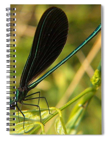 Michigan Damselfly Spiral Notebook