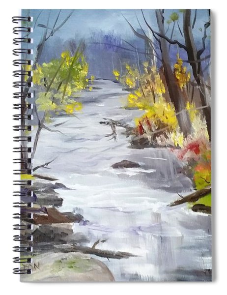 Michigan Stream Spiral Notebook