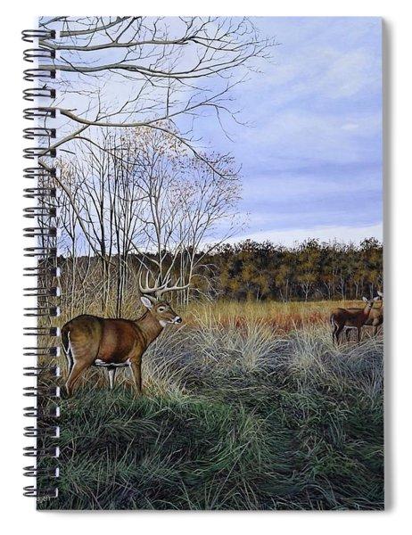 Take Out - Deer Spiral Notebook