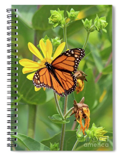 Mighty Monarch   Spiral Notebook