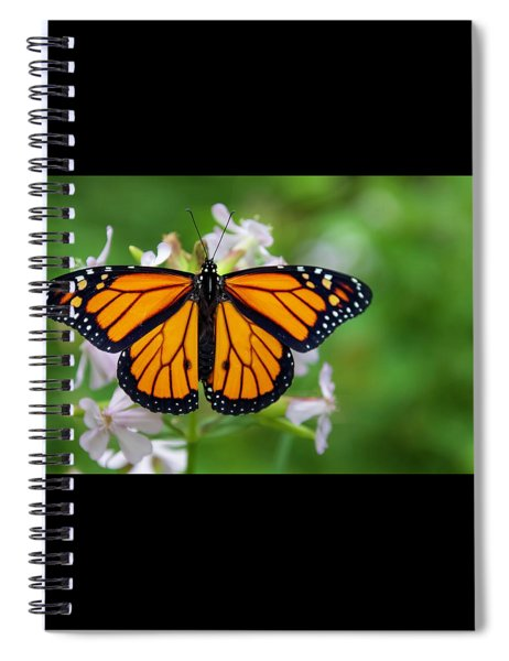 Migration Spiral Notebook
