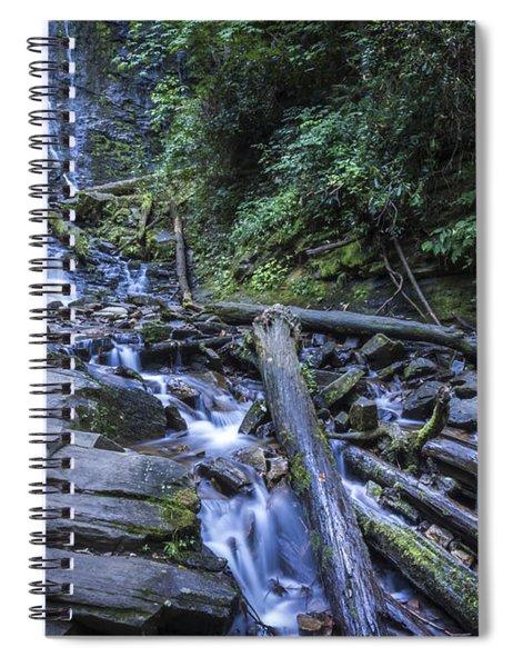 Mingo Falls One Spiral Notebook