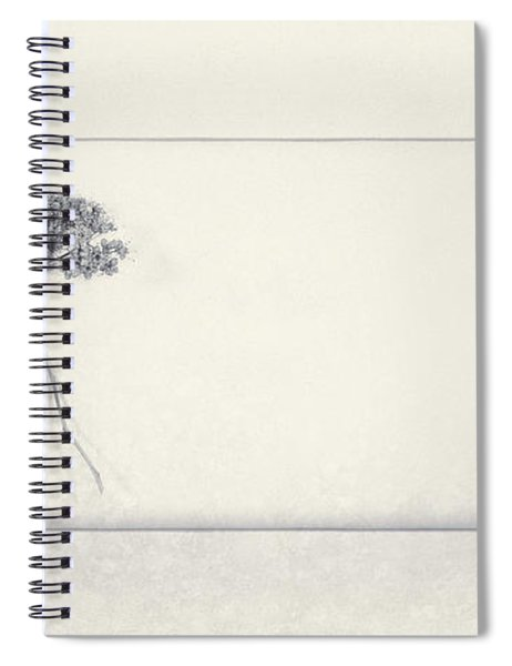 Miracle Of A Single Flower Spiral Notebook