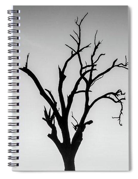 Missing Spiral Notebook