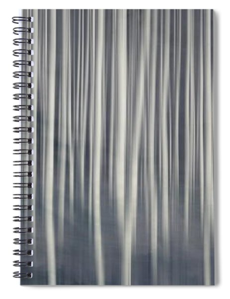 Misty Birch Forest  Spiral Notebook