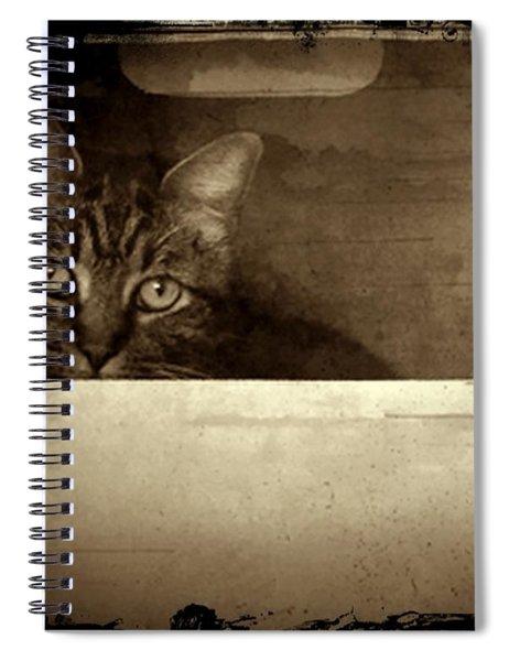 Mollie In A Box Spiral Notebook