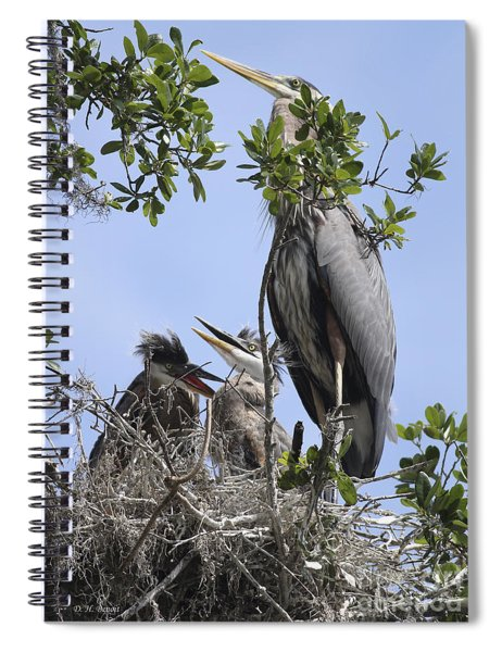 Mom And Babies Spiral Notebook