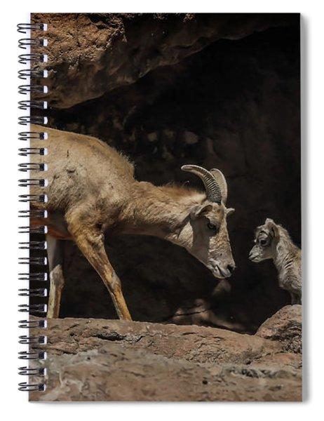 Mom N Baby Desert Big Horn Sheep Spiral Notebook