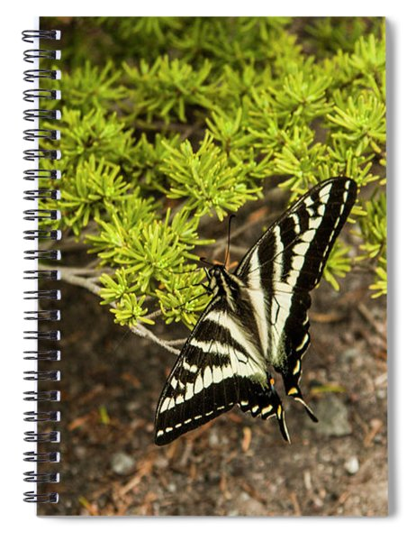 Momentary Rest Stop Spiral Notebook
