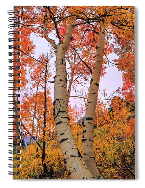 Moments Of Fall Spiral Notebook