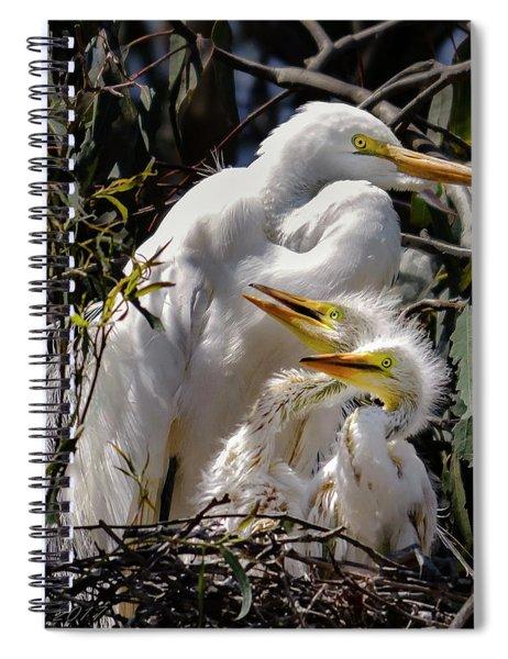Mom's Watchful Eye Spiral Notebook