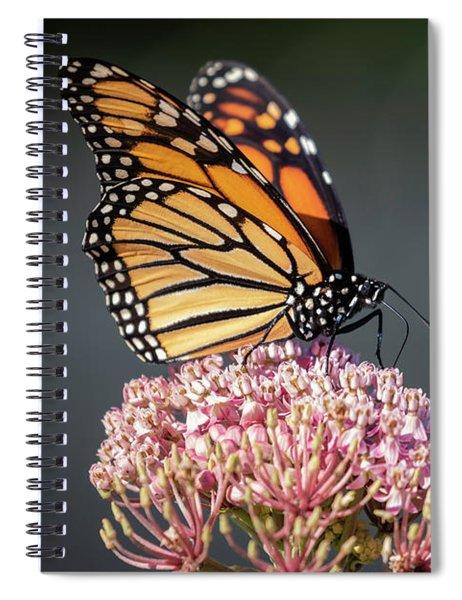 Monarch 2018-6 Spiral Notebook