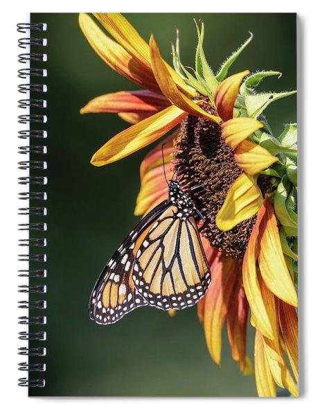 Monarch 2018-7 Spiral Notebook
