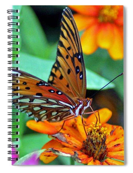 Monarch Butterfly Resting Spiral Notebook
