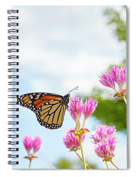 Monarch Spiral Notebook