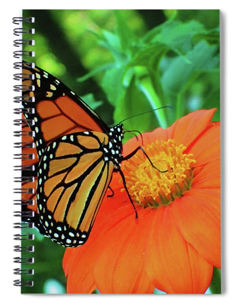 Monarch On Mexican Sunflower Spiral Notebook