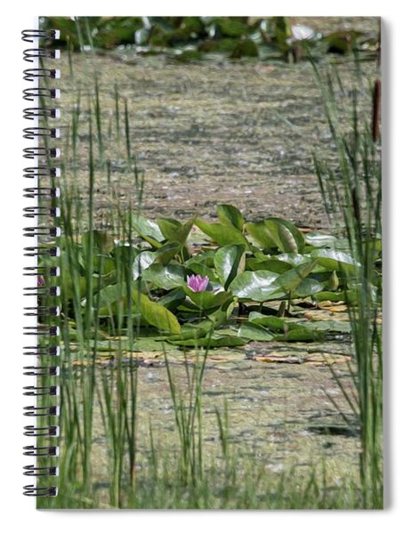 Monet At Giverny - 3 Spiral Notebook