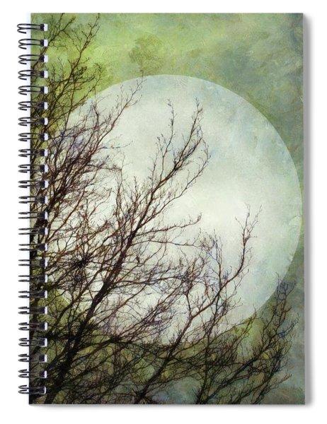 Moon Dream Spiral Notebook