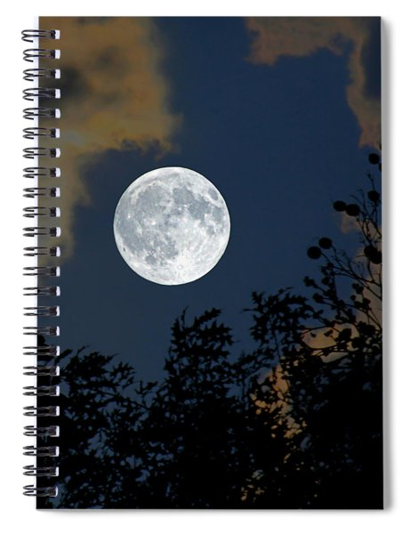 Moon Glo Spiral Notebook