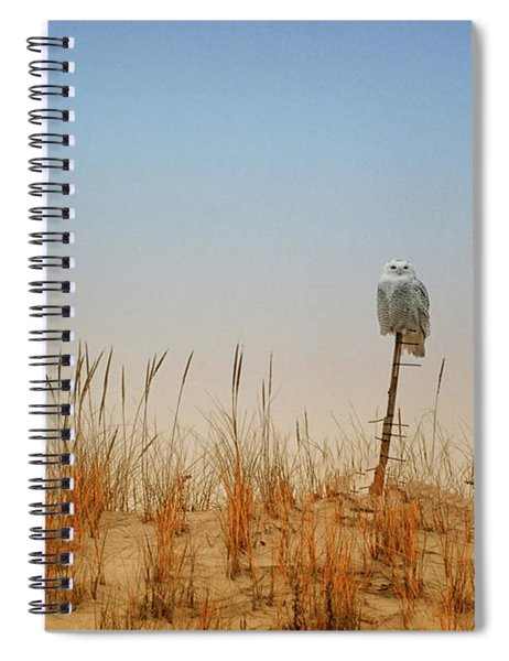 Moon Rise Snowy Owl Spiral Notebook