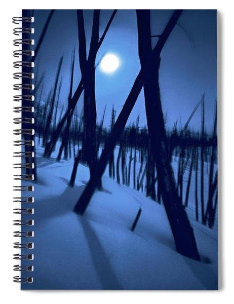 Moonshadows Spiral Notebook